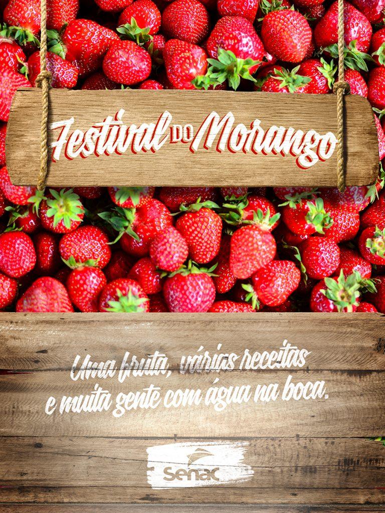 Festival Morango 2